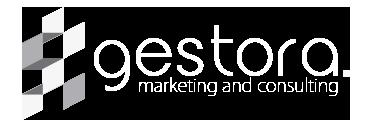Gestora Marketing & Consulting